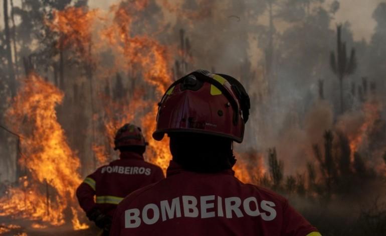 bombeiros-de-leiria-feridos-em-incendio-de-oleiros-7040