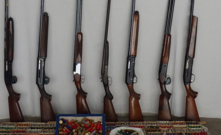 suspeito-de-violencia-domestica-apanhado-com-14-armas-9249