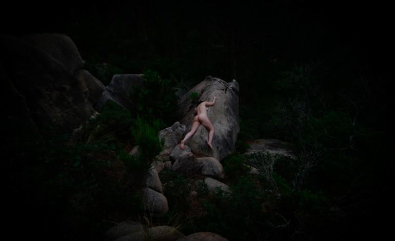 creepy-nature-10106
