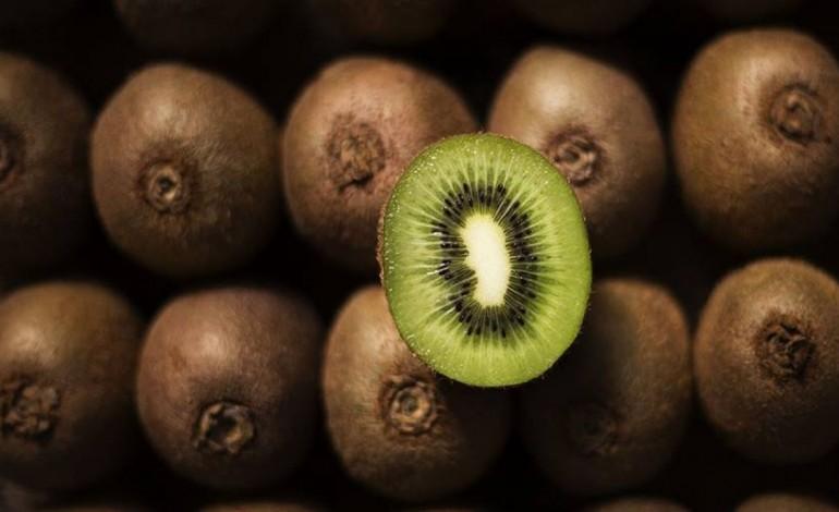 negocio-do-kiwi-incentiva-novos-pomares-e-agricultores-em-pombal-7297