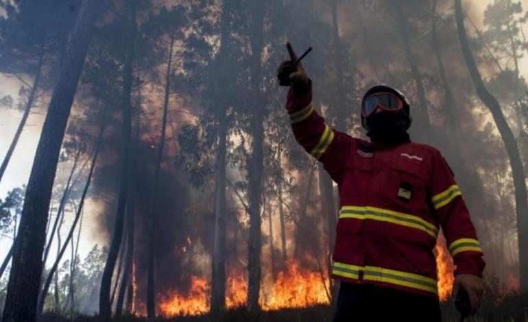 pj-de-leiria-detem-suspeita-de-atear-varios-incendios-em-ourem-9580