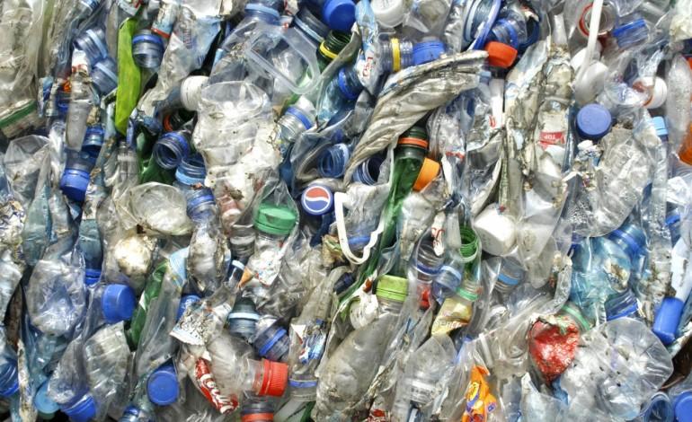 reciclagem-na-regiao-atinge-segundo-valor-mais-alto-de-sempre-9843
