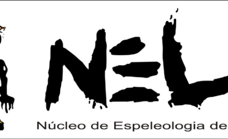 logotipo-do-nel-vence-premio-internacional-5517