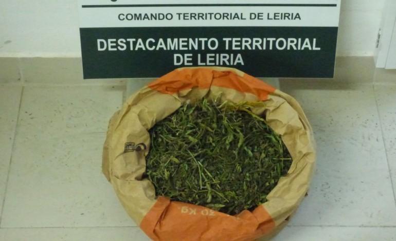 gnr-detem-dois-homens-suspeitos-de-trafico-de-droga-na-maceira-8028