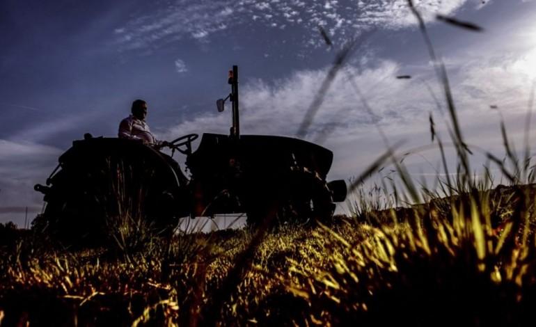 homem-morre-debaixo-de-tractor-que-capotou-em-pombal-8305