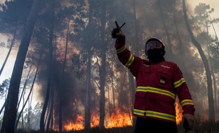 vento-forte-esta-a-alimentar-incendios-junto-a-burinhosa-em-direccao-a-sao-pedro-de-moel-7331
