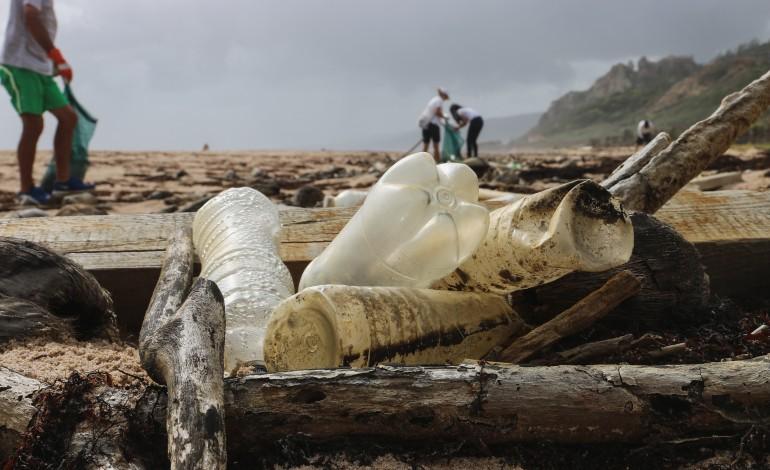 exposicao-promove-consciencializacao-das-alteracoes-climaticas-nos-bens-e-servicos-do-oceano
