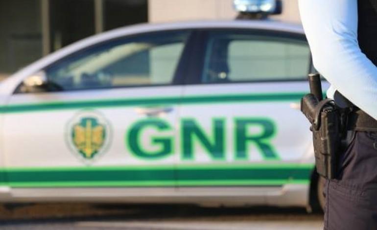 gnr-deteve-nove-pessoas-por-trafico-de-espefacientes-e-tres-delas-ficam-em-prisao-preventiva