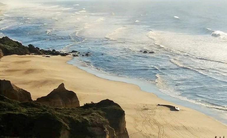 baleia-deu-a-costa-na-praia-do-vale-furado-2533