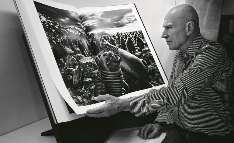 O prémio é um exemplar do livro Génesis, do conceituado fotógrafo brasileiro Sebastião Salgado (Fotografia: DR)