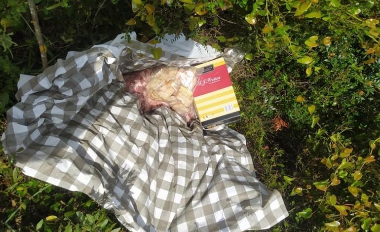 Carne ficou espalhada pelo campo