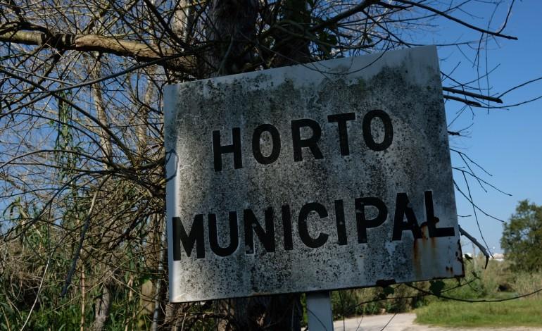 tem-um-jardim-o-municipio-de-leiria-oferece-lhe-cerejeiras-carvalhos-ou-medronheiros