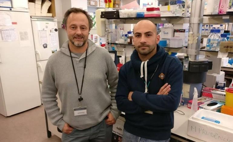 cientista-de-leiria-desenvolve-vacina-contra-a-malaria-6694