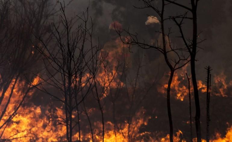 incendio-em-alvaiazere-tem-duas-frentes-activas-e-cortou-a13-10452
