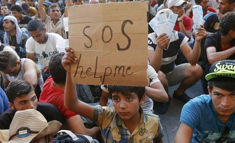 alcobaca-e-marinha-grande-vao-receber-cinco-refugiados-2673