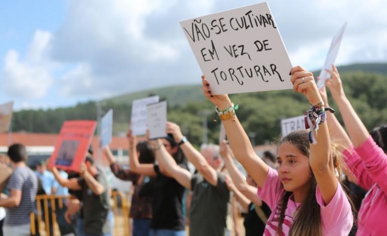 manifestantes-anti-tourada-queixam-se-de-agressoes-10483
