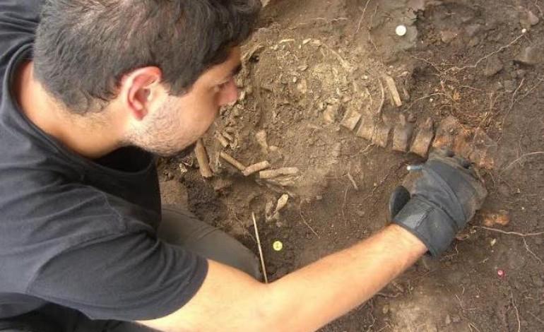 descoberta-sepultura-na-vertente-norte-do-castelo-de-leiria