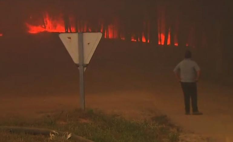 governo-confirma-57-mortos-no-incendio-de-pedrogao-grande-numero-pode-aumentar-6641