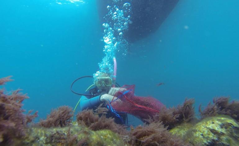 algas-invasoras-ameaca-nos-oceanos-oportunidade-no-prato-5987