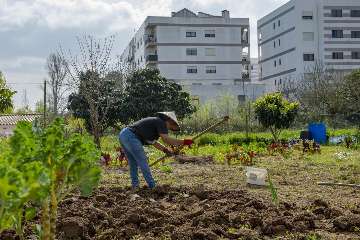 horta-na-cidade-leiria-2021