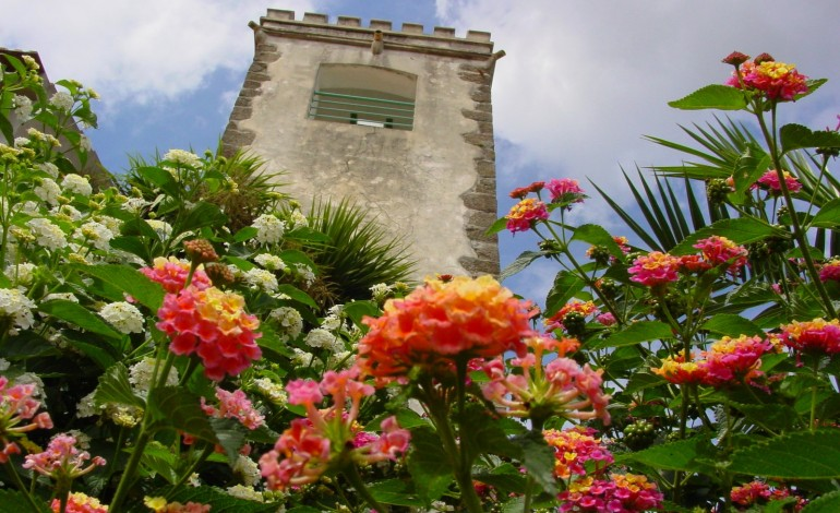 Torre Comarcã de Figueiró dos Vinhos