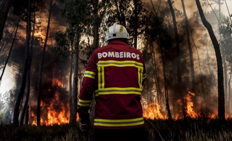 governo-pretende-apostas-em-bombeiros-profissionalizados-em-todos-os-municipios-7671