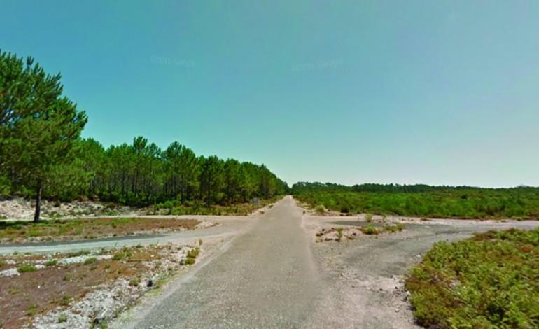 icnf-alega-que-nao-tem-de-reparar-vias-florestais-para-uso-colectivo-4729