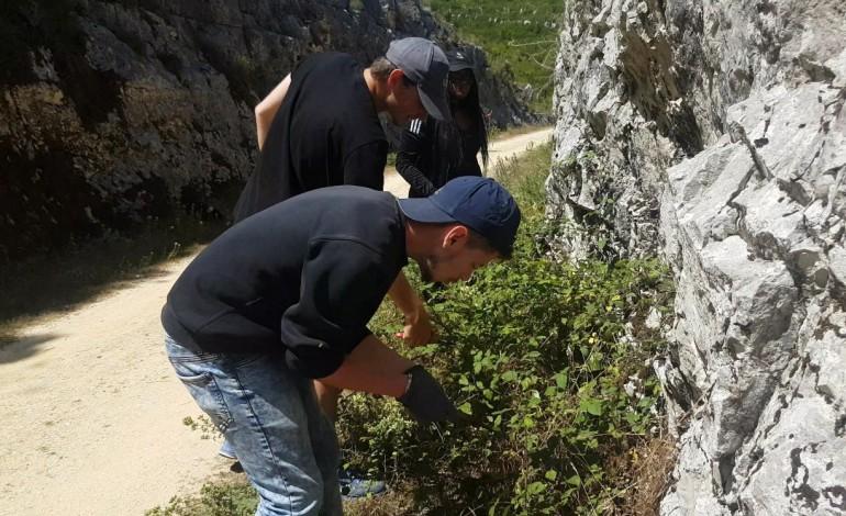 jovens-voluntarios-recuperam-ecopista-e-casas-em-porto-de-mos-10497