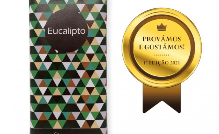 tablete-de-eucalipto-da-bombons-do-lis-venceu-primeira-edicao-do-provamos-e-gostamos