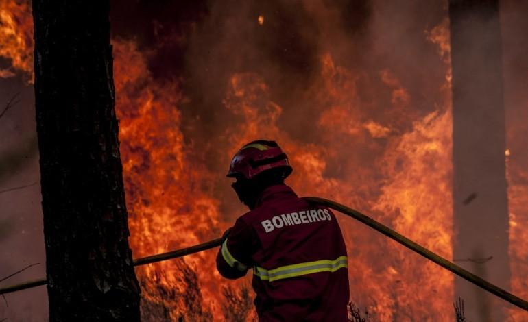 proteccao-de-dados-da-luz-verde-a-gnr-para-vigiar-incendios-rurais-com-14-drones