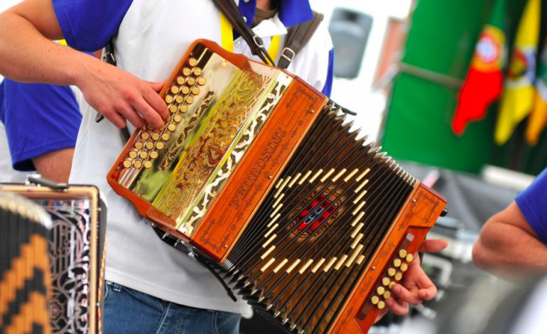 encontro-nacional-de-tocadores-de-concertina-da-barrenta-acontece-no-mundo-virtual