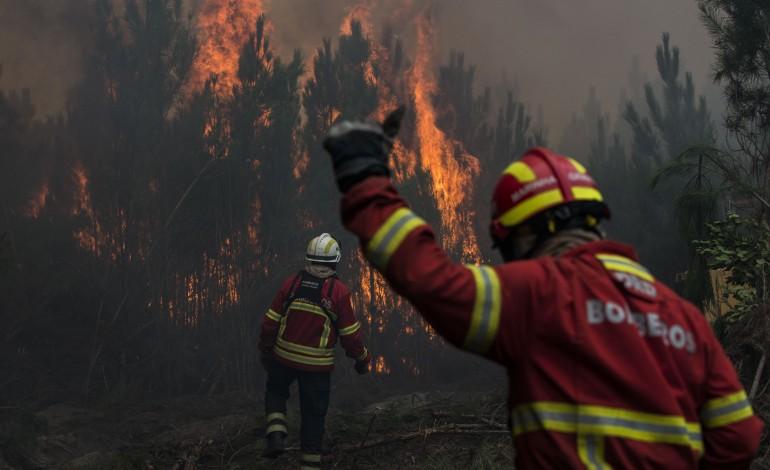 homem-apanhado-a-por-fogo-em-mato-de-porto-de-mos-7429