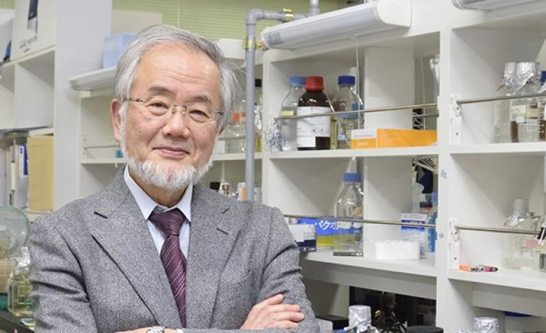 nobel-da-medicina-atribuido-ao-japones-yoshinori-ohsumi-5131