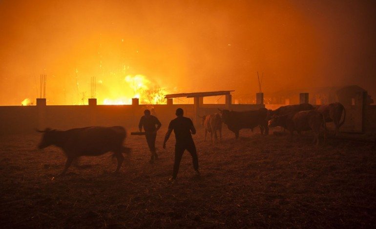 chuva-so-chega-as-zonas-afectadas-pelo-fogo-ao-final-do-dia-7341