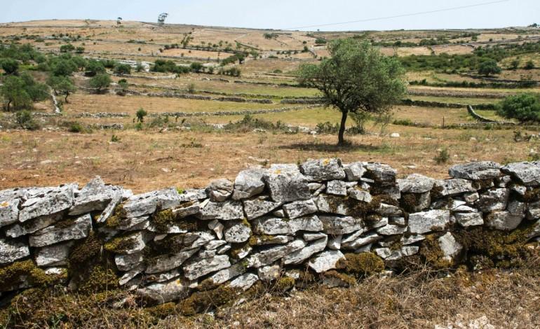 muros-de-pedra-seca-querem-ser-patrimonio-da-humanidade